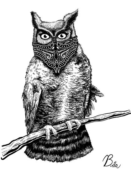 owlshirt_bria