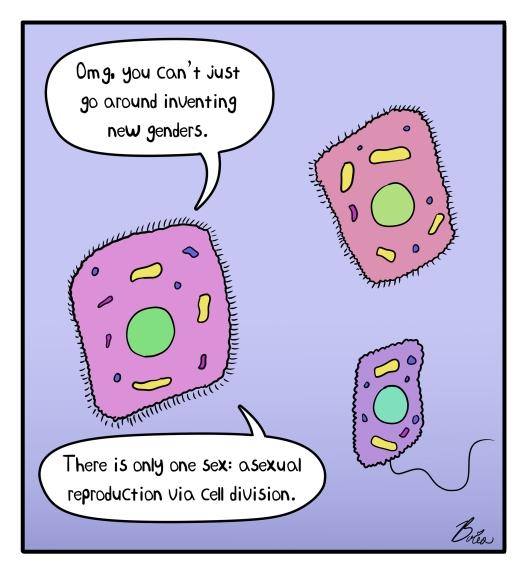 Microbe.jpg